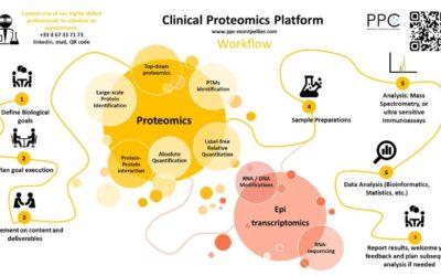 Workflow PPC